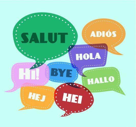 שפות שונות לגולשים מאזורים שונים